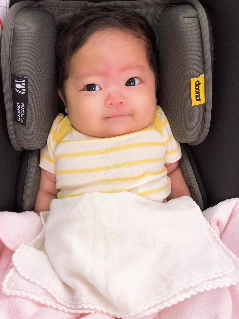 小黃妃現在已經有十一磅重,黃澤鋒說女兒胖得手腳一節節,有點像米芝蓮人。