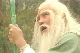 劉丹在1983年版《射鵰英雄傳》、1984年版《神鵰俠侶》、1994年版《射鵰英雄傳》和1995年版《神鵰俠侶》飾演洪七公。