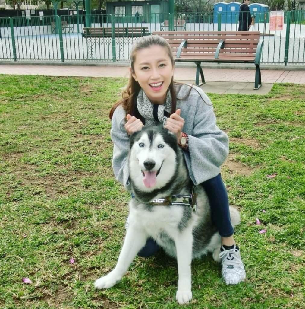 郭思琳所養雪橇犬幾個月前過身,她的心情至今仍未能平伏。
