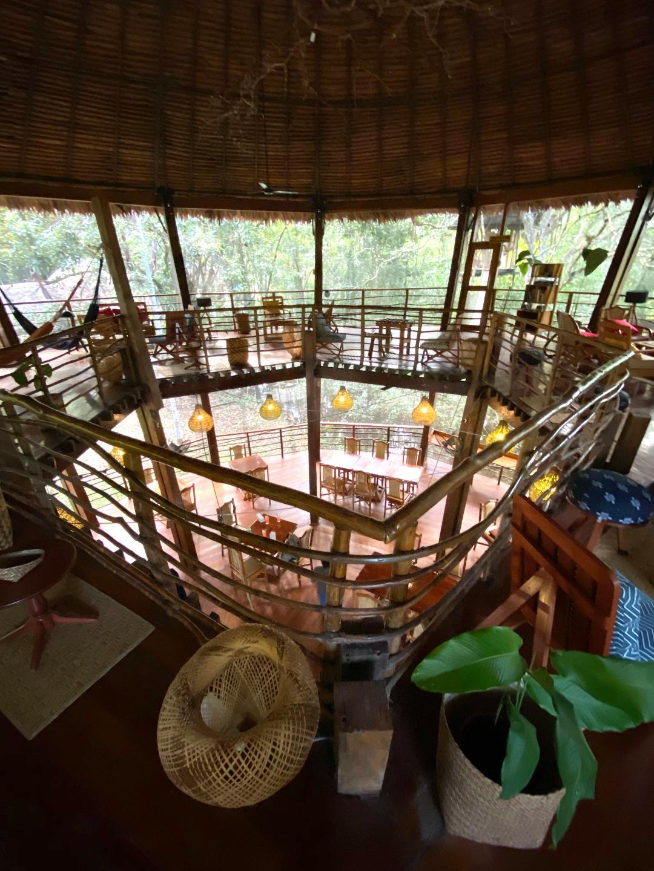 amazonhotel16