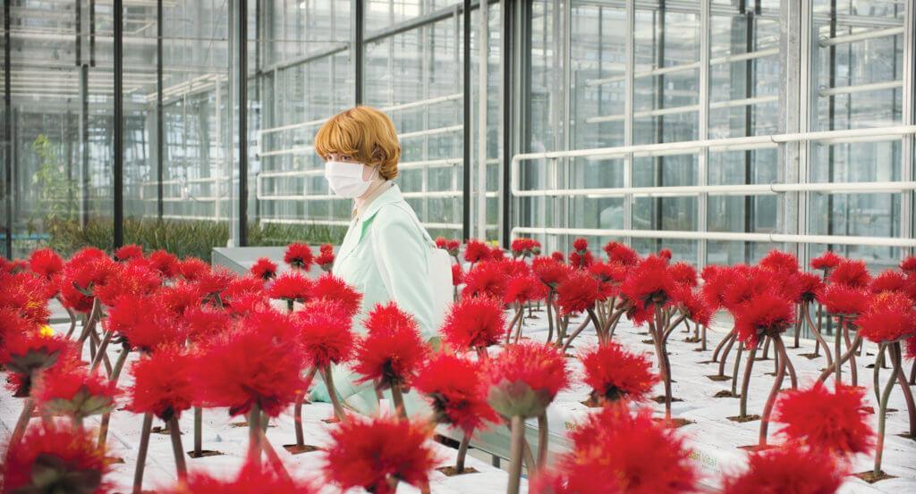 《極樂品種》描寫女主角艾蜜莉碧崔飾演的植物學家培育洗腦魔花