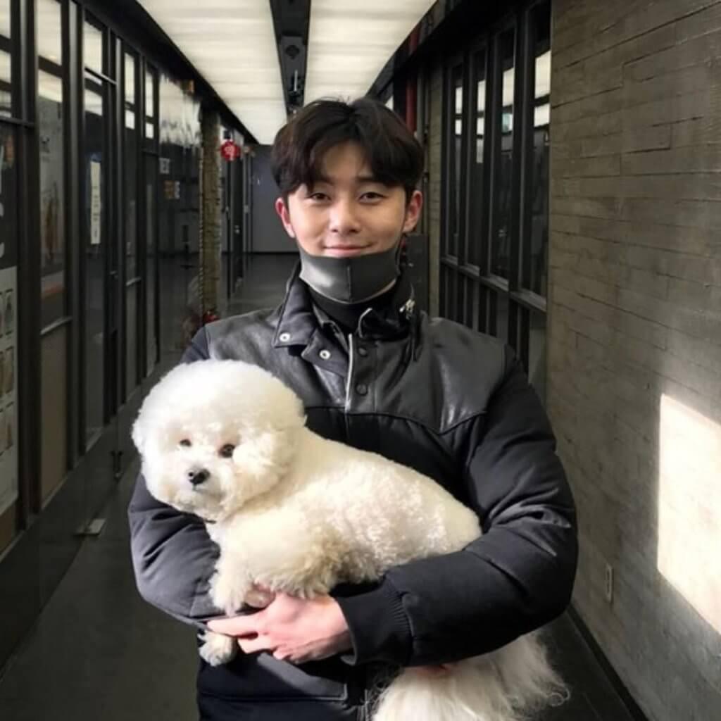 朴敘俊不時上載與愛犬的親密照