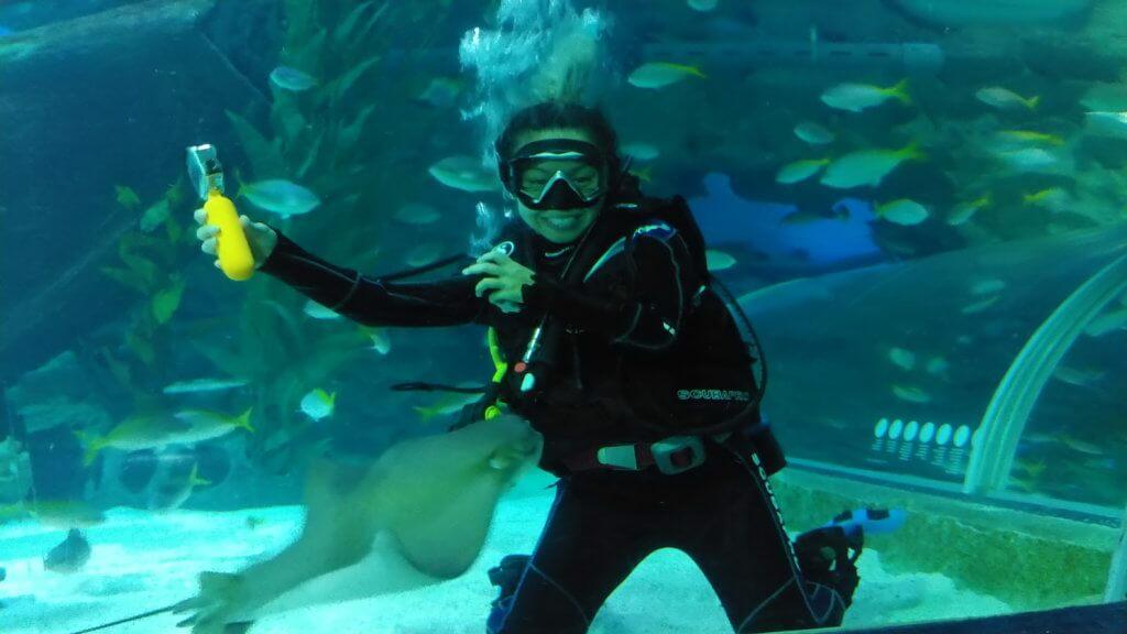 現時跟陳鍵鋒考高級潛水牌的鄭融,在水族館跟鯊魚游水。
