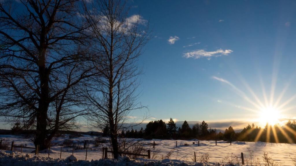 影片主要在加拿大的冰天雪地取景,拍出末世森林氣氛及詩意。