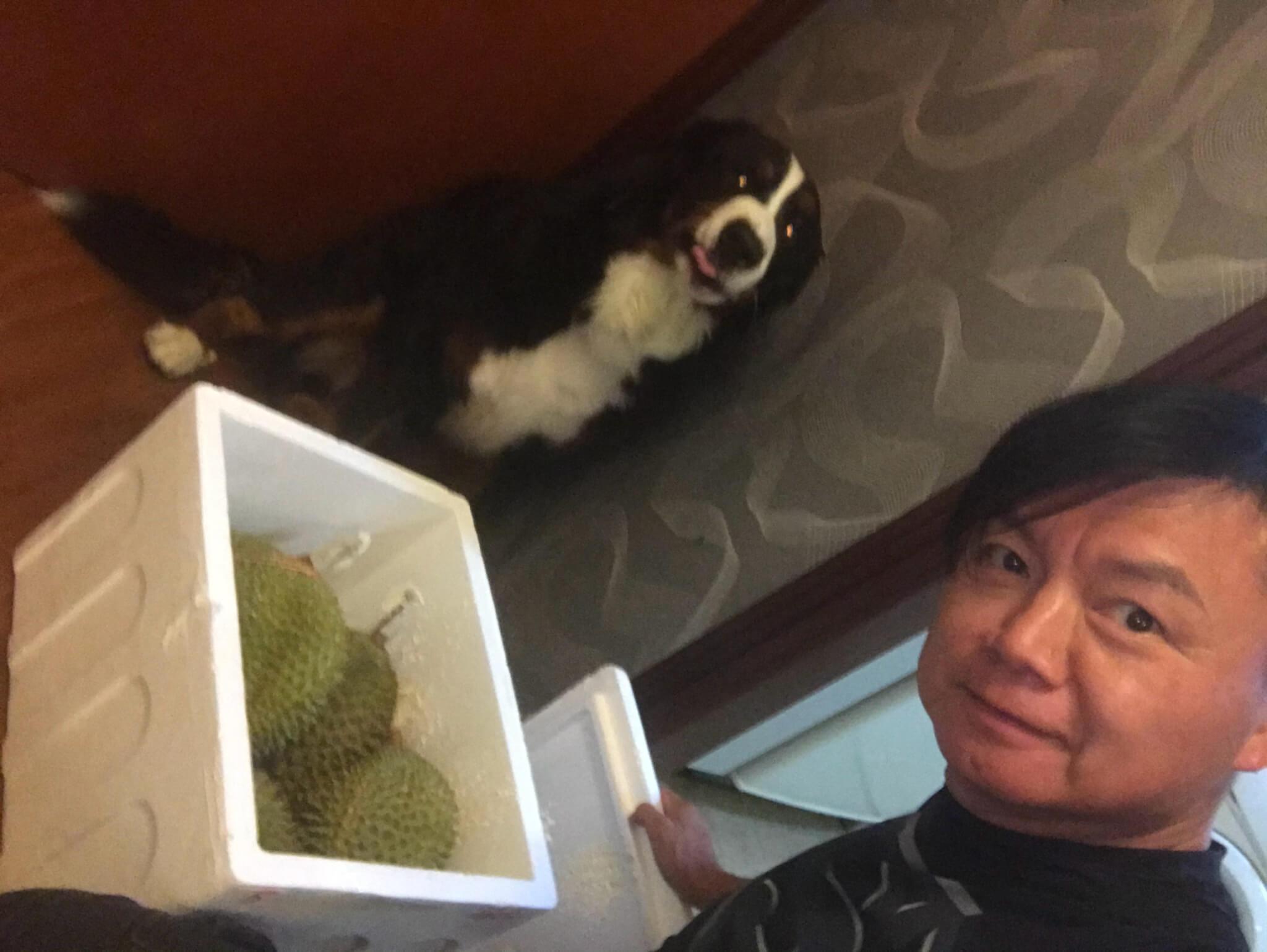 艾威與愛犬(艾威@微博)