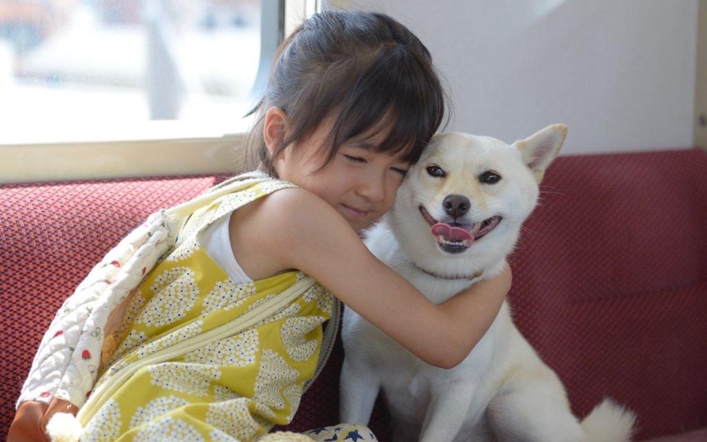 天才級演技的新津知世,跟白色柴犬演出自然投入。
