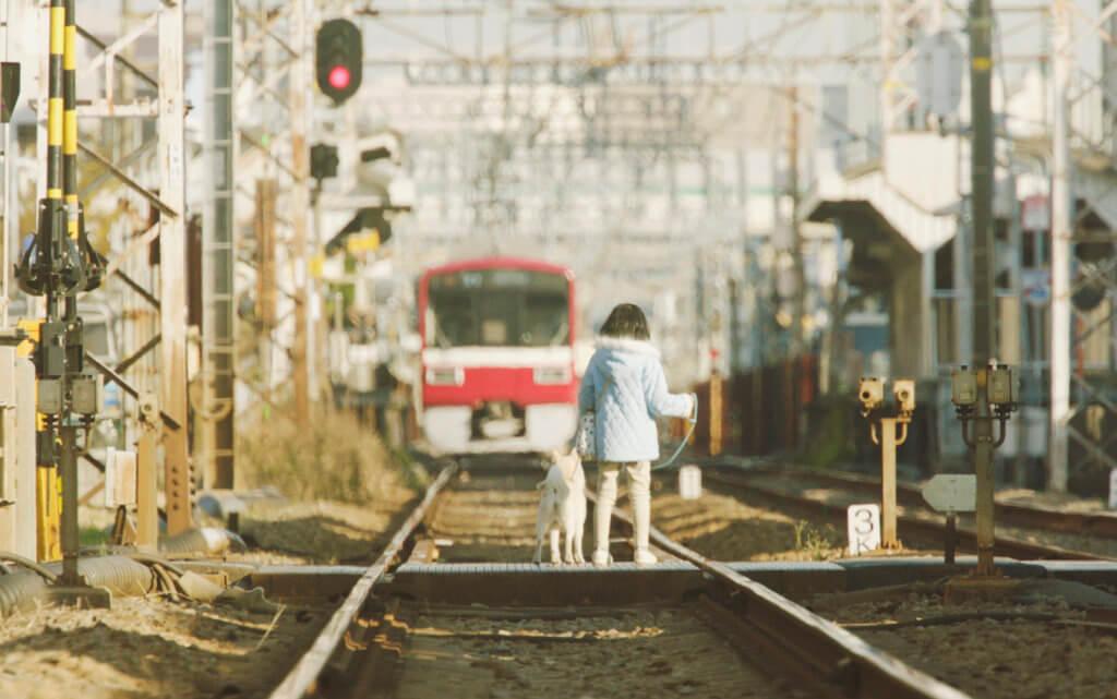 影片獲京急電鐵全面配合拍攝,使原著畫面呈現電影中。