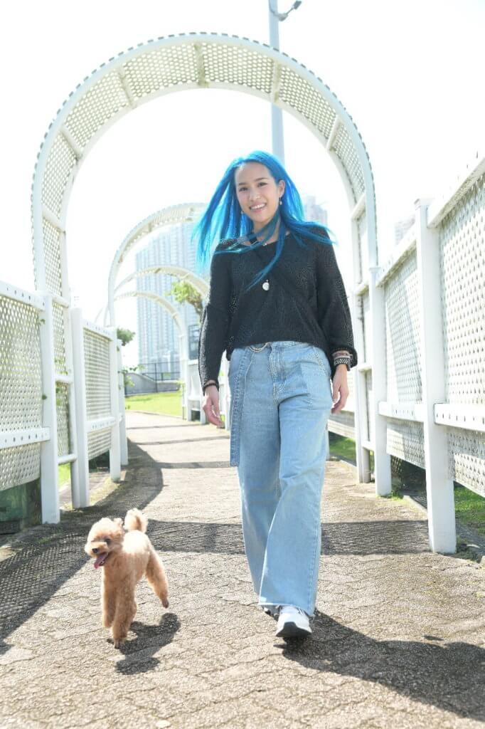由於Bilu有椎間盤突出問題,所以野人通常會帶牠去寵物公園散步,而且不用狗帶牽扯牠,避免觸痛牠的頸部。