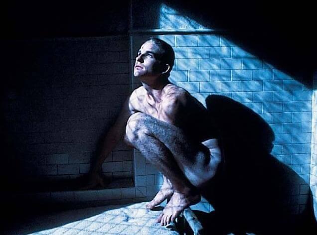 《追鳥》中的馬修在越戰後有創傷症候羣,無法開口說話,整天將自己身軀縮成鳥狀。