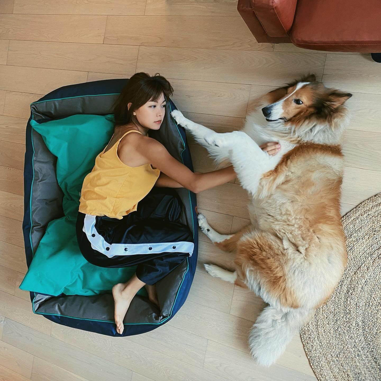 Inez十分寵愛Coco,在家中經常玩作一團。