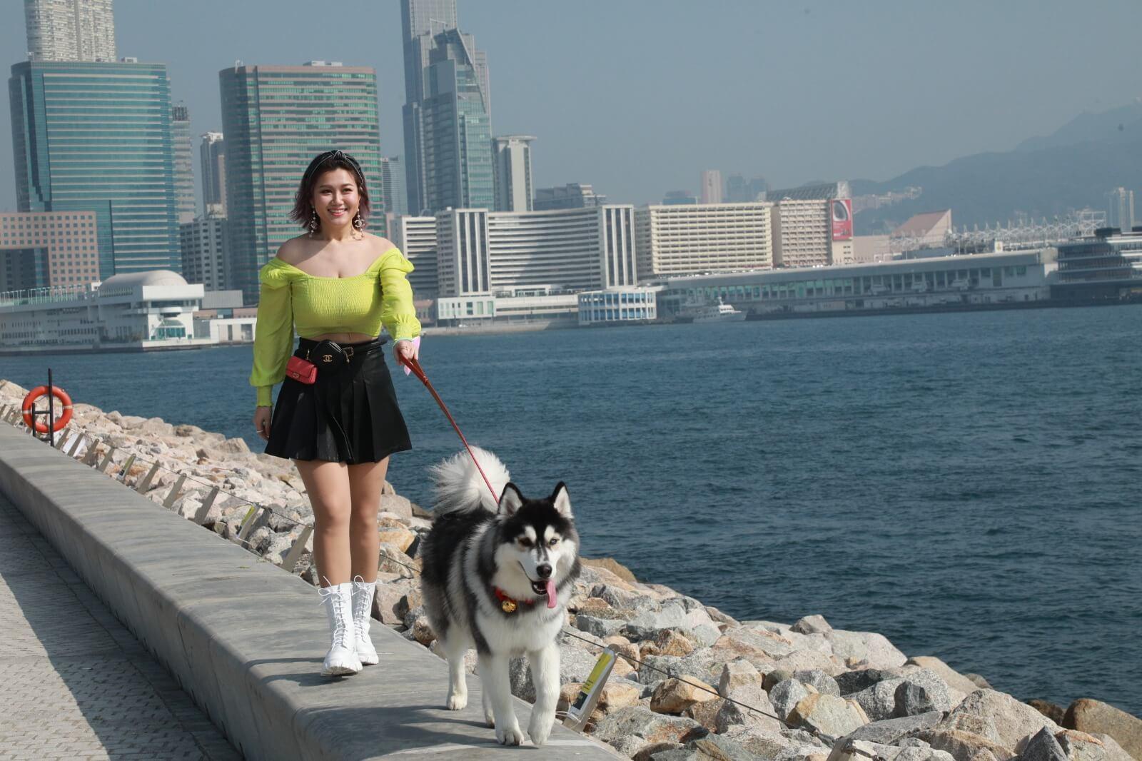 白雲為了令Cash懂得散步禮儀,特別找來狗導師教學。
