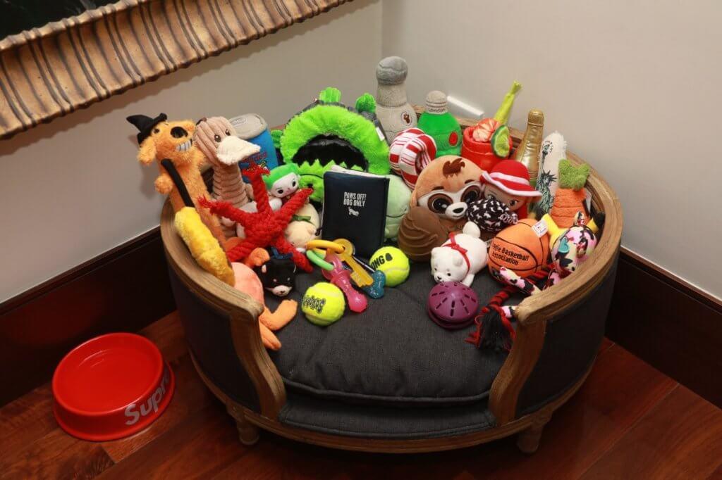 Jordan久不久會含起舊玩具玩,所以新舊玩具也會放在一起,看牠何時寵幸。