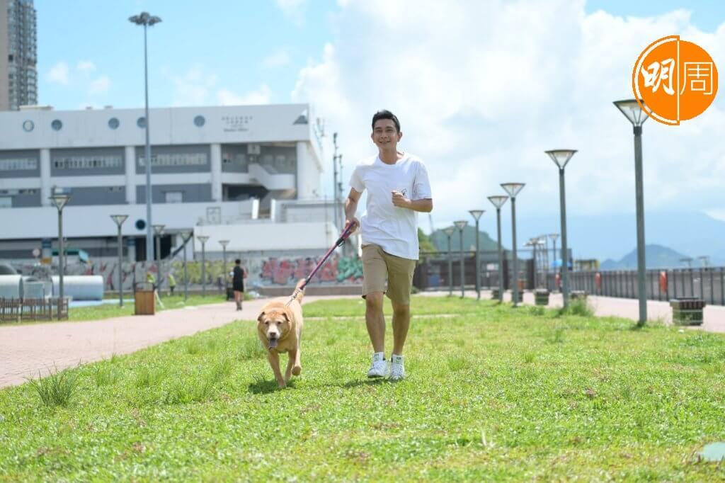 豬吉體形比較大,小時候需要的運動量亦頗大,李尚正與家人每天都要帶牠出街散步。