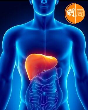 香港男性患肝癌的數字遠遠高於女性。