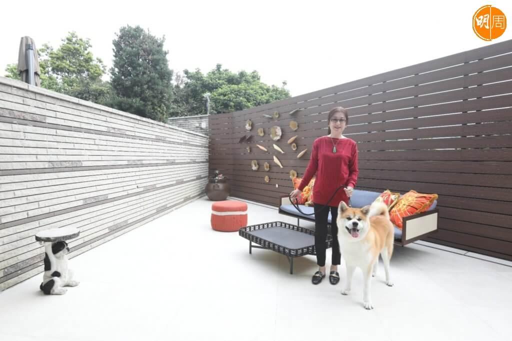 花園是狗狗主要的活動空間,沒有太多擺設更不能有花草。