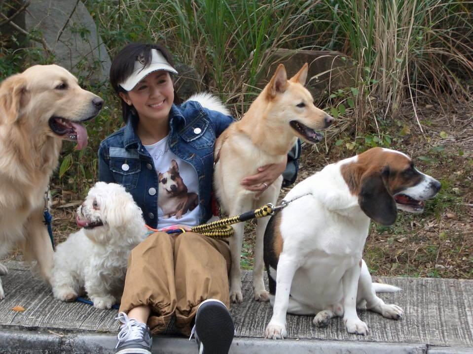 唐寧曾養過多隻狗
