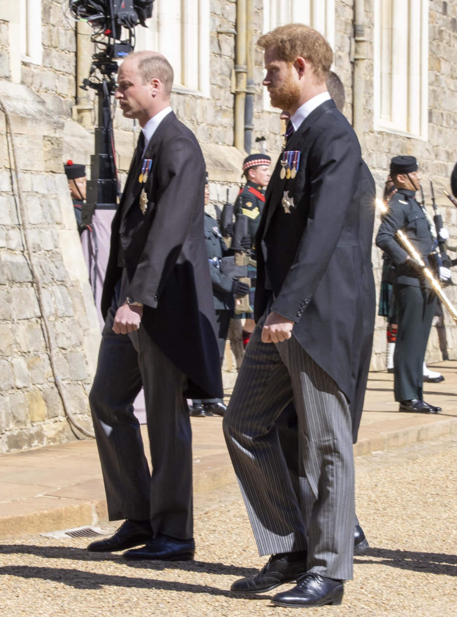 威廉王子及哈里王子
