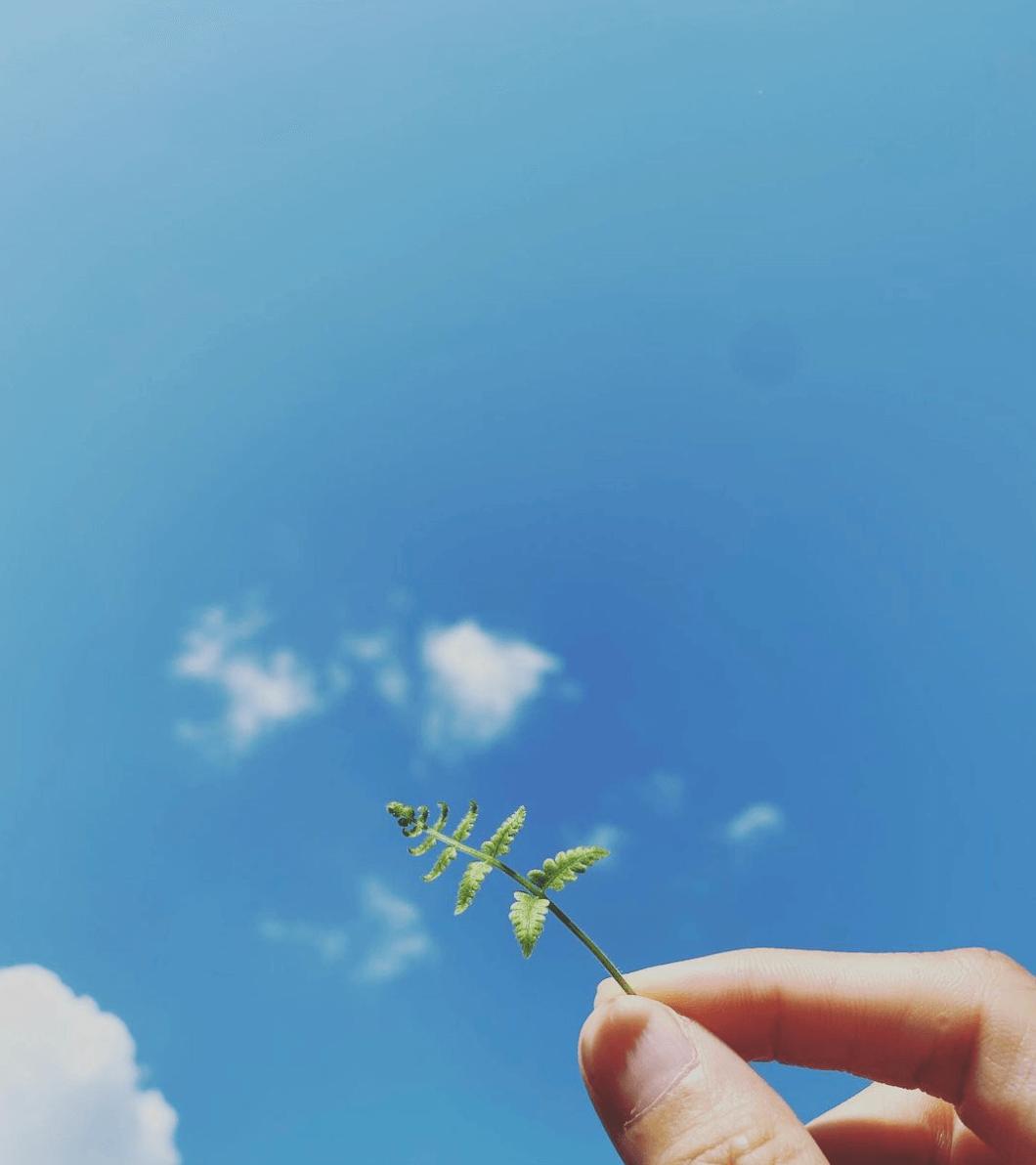 翠如早前貼出一張望往天空的照片,並留意講「再見」。